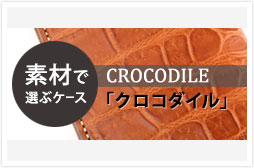 c_case_crocodile