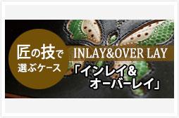 c_case_inlay