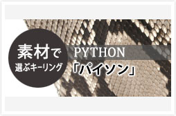 c_keyring_python