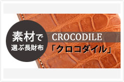 c_long_crocodile