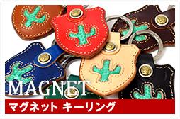 c_keyring_magnet